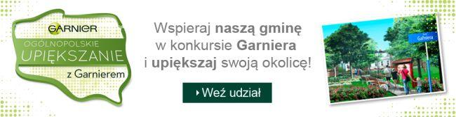 Garnier 2.jpeg